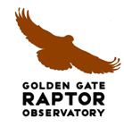 Golden Gate Raptor Observatory