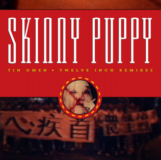 Tin Omen (song) 1989 single by Skinny Puppy