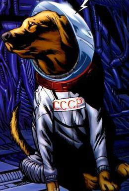 Cosmo The Spacedog Wikipedia If you need to try the latest style of captain marvel costumes, be sure to check out this page. cosmo the spacedog wikipedia