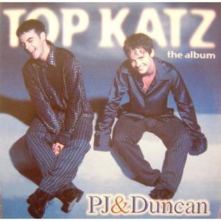<i>Top Katz</i> 1995 studio album by PJ & Duncan