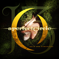 Weak and Powerless 2003 single by A Perfect Circle