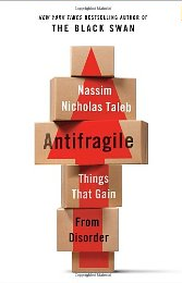 Holiday Business Reading 2017 – Antifragile