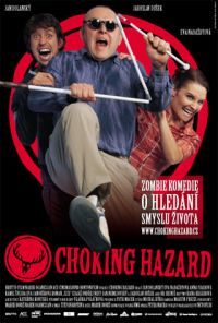 <i>Choking Hazard</i>