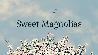 Sweet Magnolias - Wikipedia