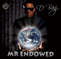 Mr Endowed 2010 song performed by Dbanj