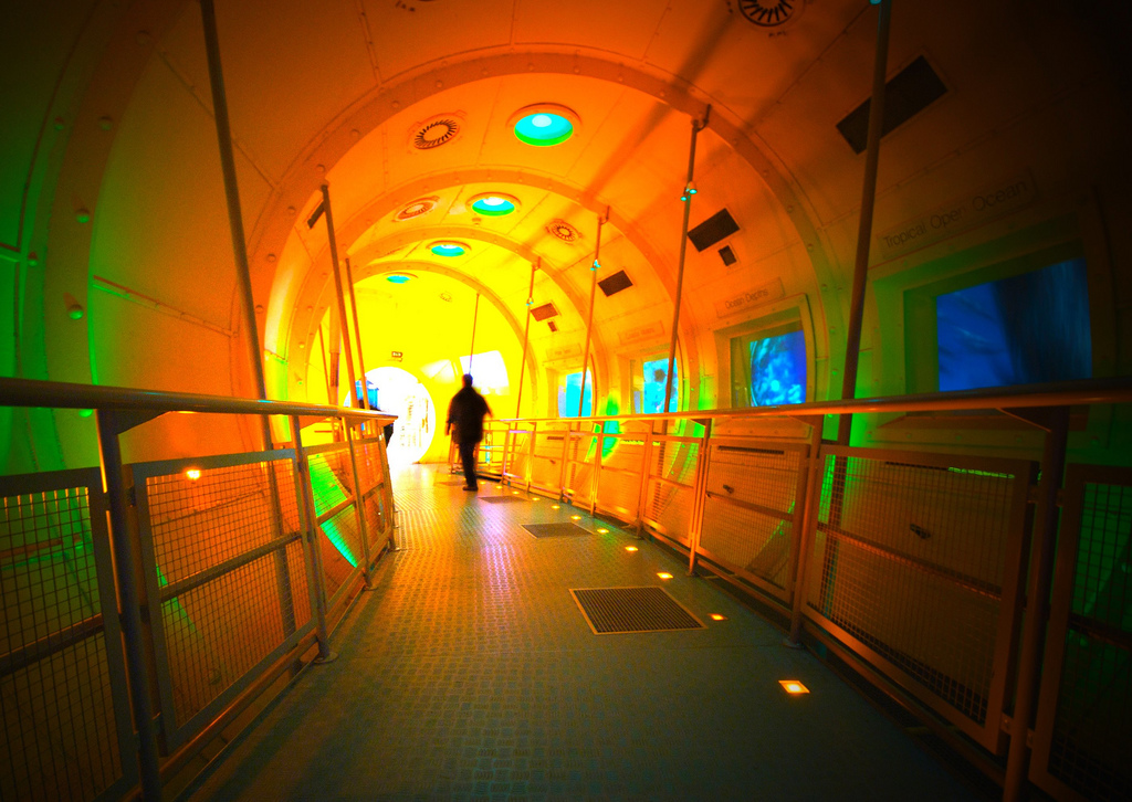 File Our Dynamic Earth Tunnel Jpg Wikipedia