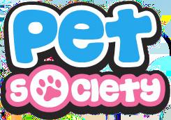 pet game