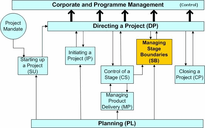 Process Flow Chart Example: Project management - Wikipedia,Chart