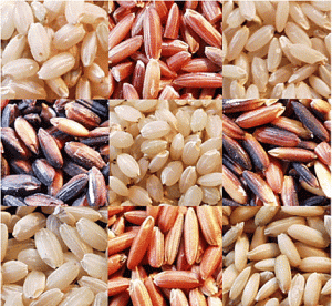 Traditional rice of sri lanka wikipedia forumfinder Image collections