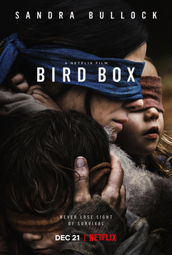 download Bird Box (2018) Dual Audio {Hin-Eng} 480p | 720p