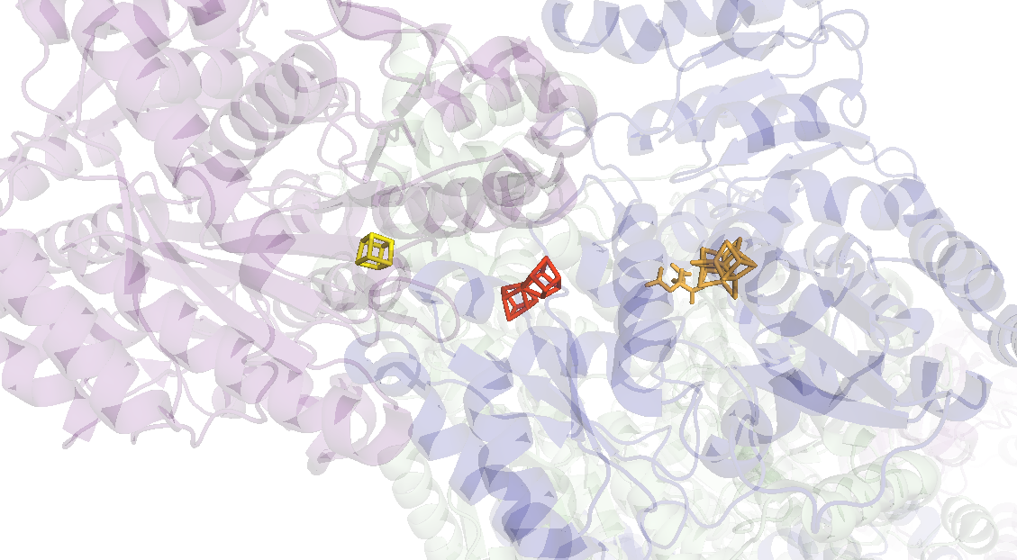 Figure 2: Nitrogenase with one set of metal clusters magnified. Electrons travel from the Fe-S cluster (yellow) to the P cluster (red), and end at the ...