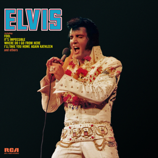 Elvis 1973 artwork