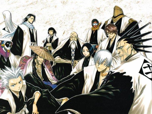 The 13 Soul Reaper Captains