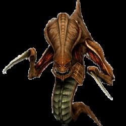 Zerg Rush: Easter Egg Alien di Halaman Pencarian Google
