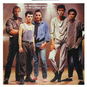 <i>In the Long Grass</i> album by The Boomtown Rats