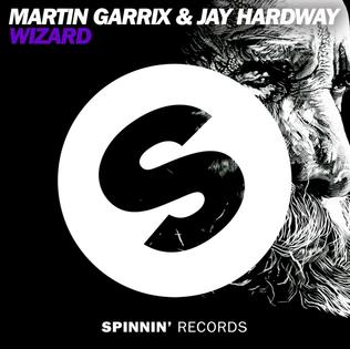 Martin Garrix and Jay Hardway — Wizard (studio acapella)