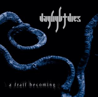<i>A Frail Becoming</i> 2012 studio album by Daylight Dies