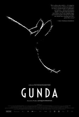 Picture of a movie: Gunda