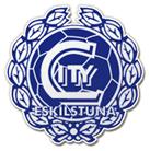 Eskilstuna City FK Swedish football club