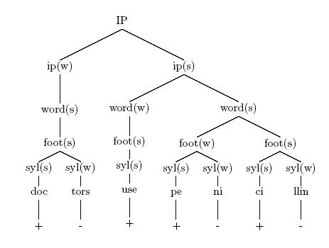 Metrical phonology - Wikipedia