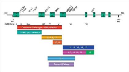 Velocardiofacial syndrome and DiGeorge sequence