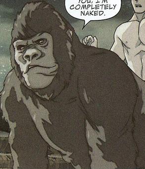 girl end gorila sex
