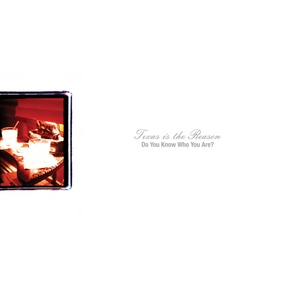 <i>Do You Know Who You Are?</i> 1996 studio album by Texas Is the Reason