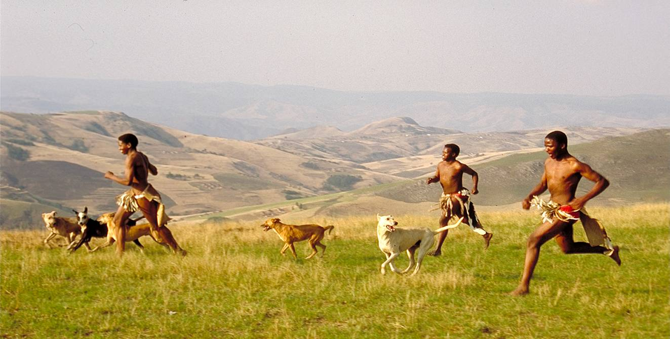 File:Run with zulus.jpg - Wikipedia