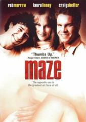 <i>Maze</i> (2000 film) 2000 film by Rob Morrow