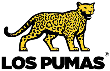 Image result for los pumas logo