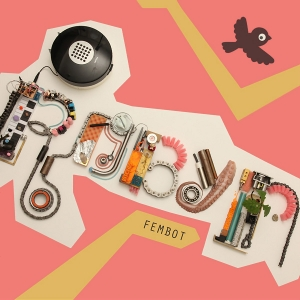 Fembot (song) 2010 song performed by Robyn