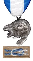 Image result for silver beaver award