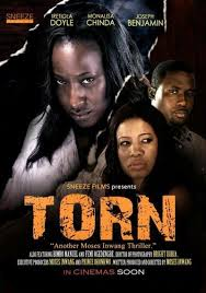 <i>Torn</i> (2013 Nigerian film) 2013 Nigerian psychological thriller film directed by Moses Inwang