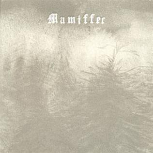 <i>Hirror Enniffer</i> 2008 studio album by Mamiffer