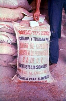 "A sack of ""pink grain"". Note the labelling in Spanish, and the grain's distinctive orange-pink colour. Images like this were suppressed in state media.[1]"