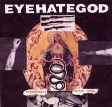 <i>Confederacy of Ruined Lives</i> 2000 studio album by Eyehategod