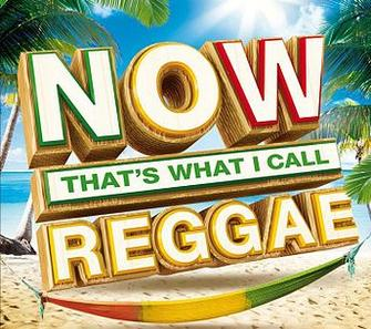 Now Thats What I Call Reggae Party