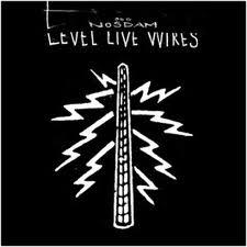 <i>Level Live Wires</i> 2007 studio album by Odd Nosdam