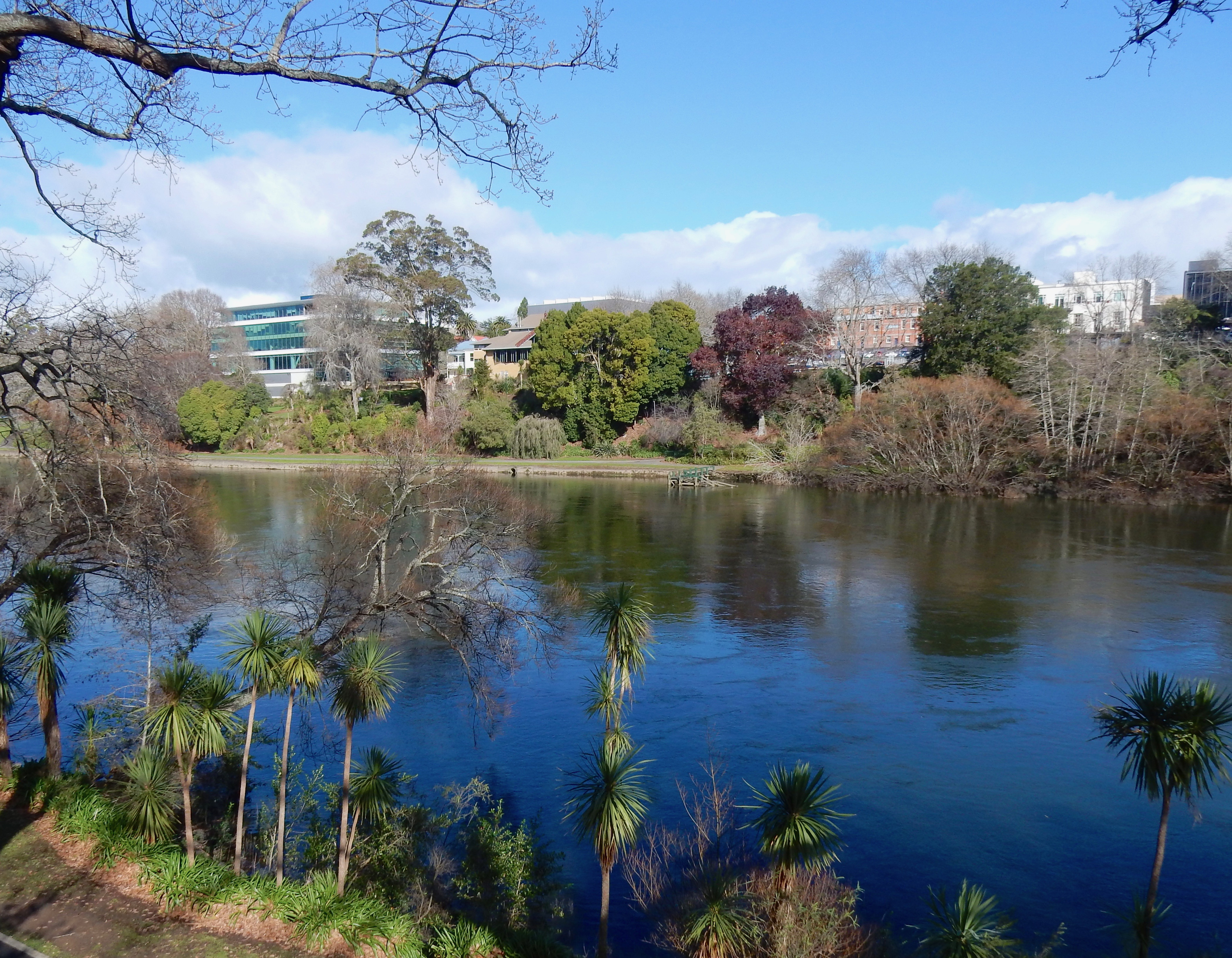Waikato_River_in_Hamilton_Central_from_P