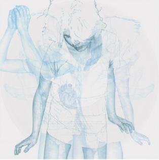 <i>Hello Hum</i> 2012 studio album by Wintersleep