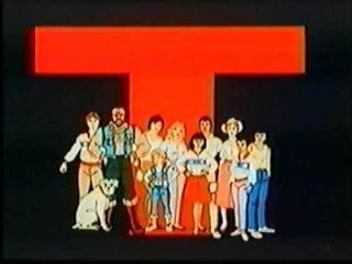 <i>Mister T</i> (TV series) television program