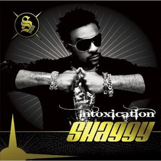 <i>Intoxication</i> (album) 2007 studio album by Shaggy