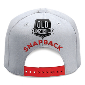 Old Dominion - Snapback (studio acapella)