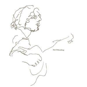 <i>David Bromberg</i> (album) 1972 studio album by David Bromberg