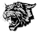 East Chapel Hill High School logo.png