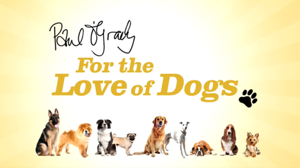 paul o grady for the love of dogs does britain dislike