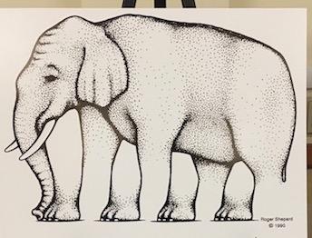 Shepard elephant - Wikipedia