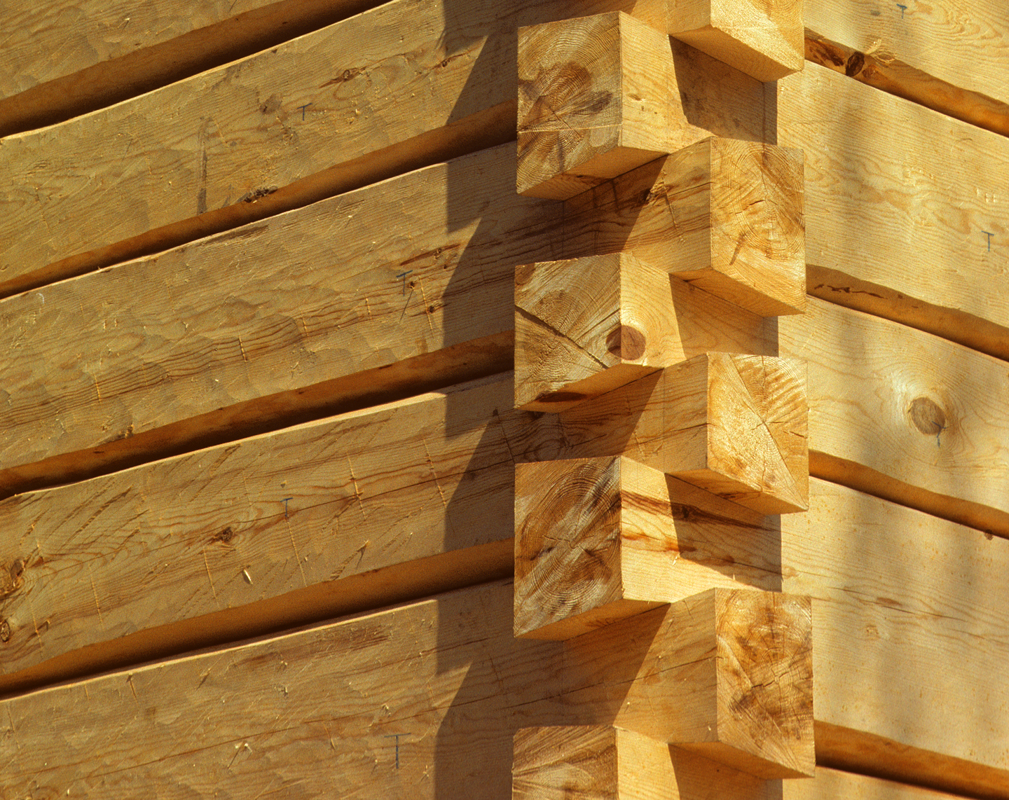 File dovetail corner full scribe hand hewn for Log cabin styles