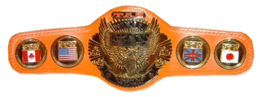 Ecw world heavyweight championship history