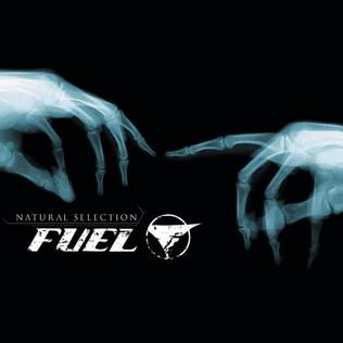 <i>Natural Selection</i> (Fuel album) 2003 studio album by Fuel
